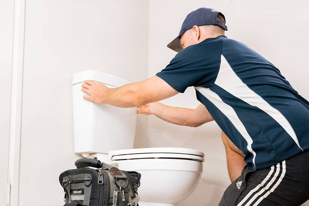 fixing clogged and dripping toilet